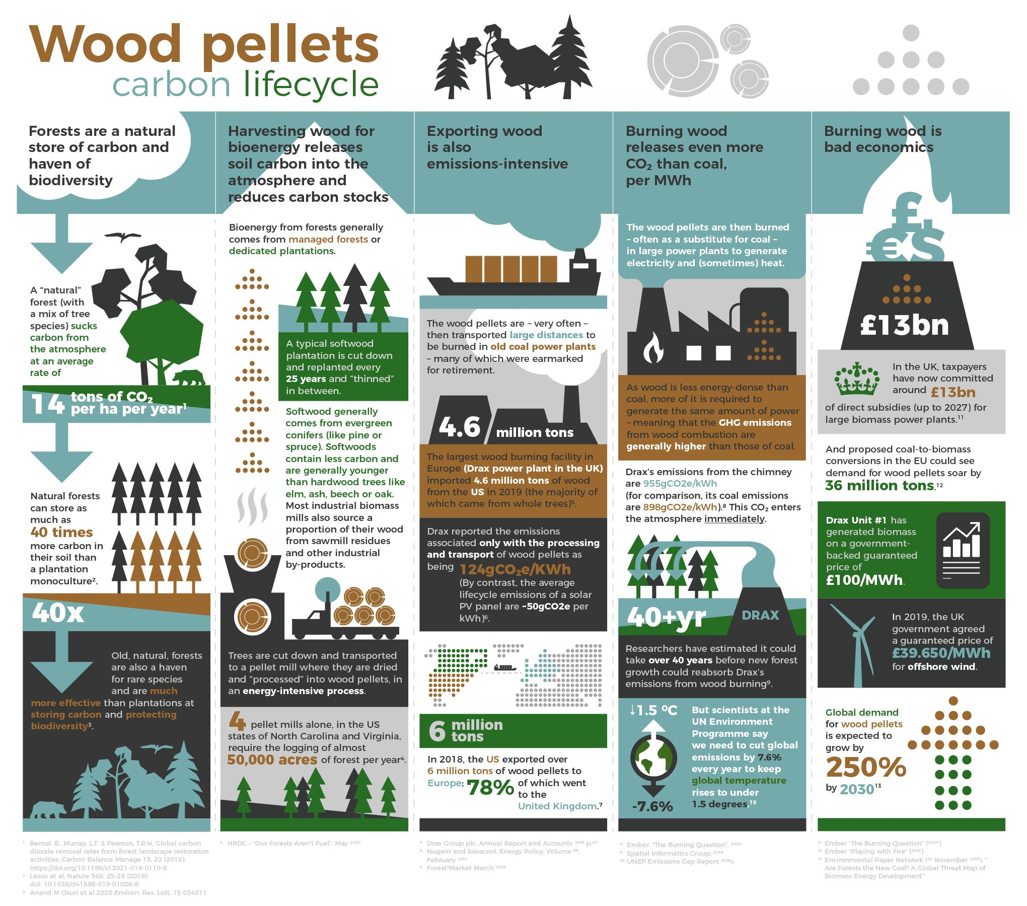 Infographic - burning wood for energy