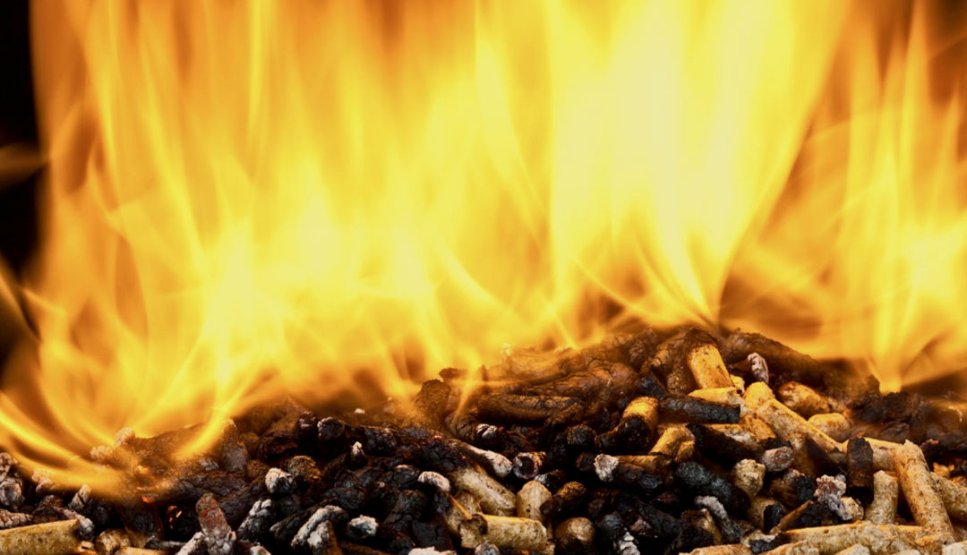 The problem with burning wood for heat and power