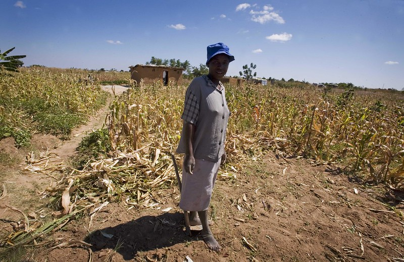 Food and the struggle for Africa's sovereignty